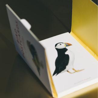Bird PostcardsBird Postcards